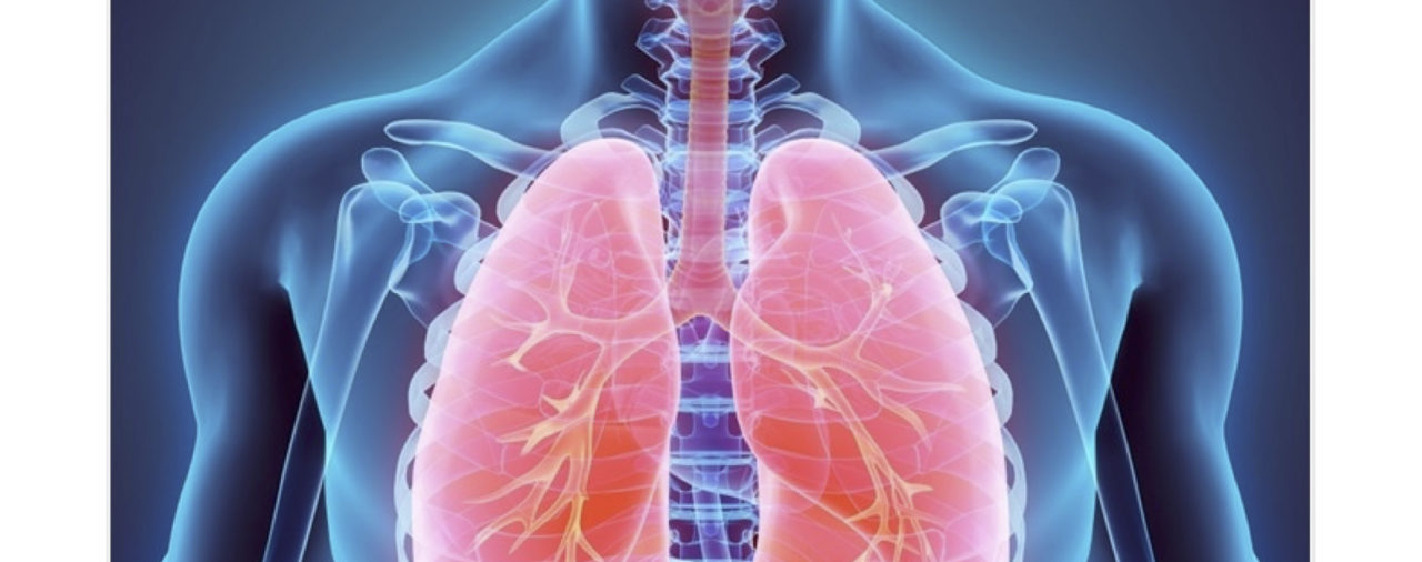 Two New Projects: Cystic Fibrosis and Respiratory Syncytial Virus